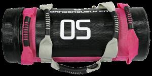 Dangerously Fit Power Bag
